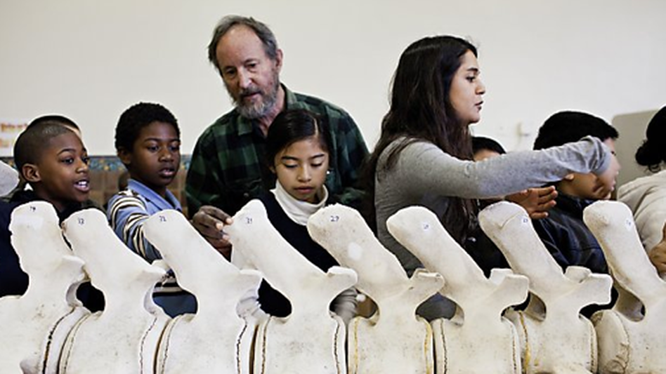Dan Sudran helps kids from San Francisco's John Muir Elementary reconstruct a 36-foot gray whale with actual whale bones. (Mission Science Workshop)