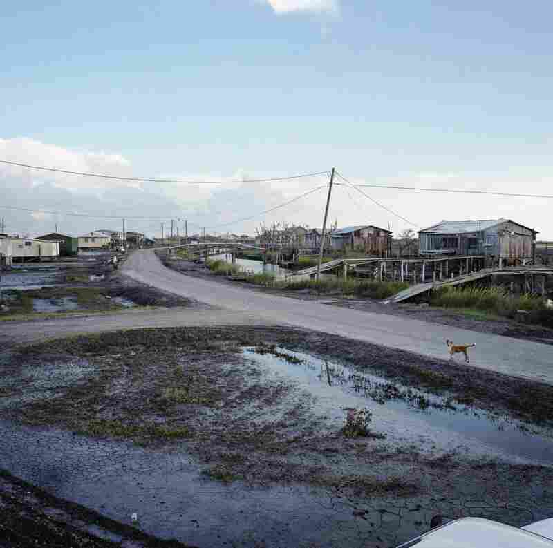 View from (the Late) Virgil Dardar's Porch, Isle de Jean Charles, Louisiana, 2008