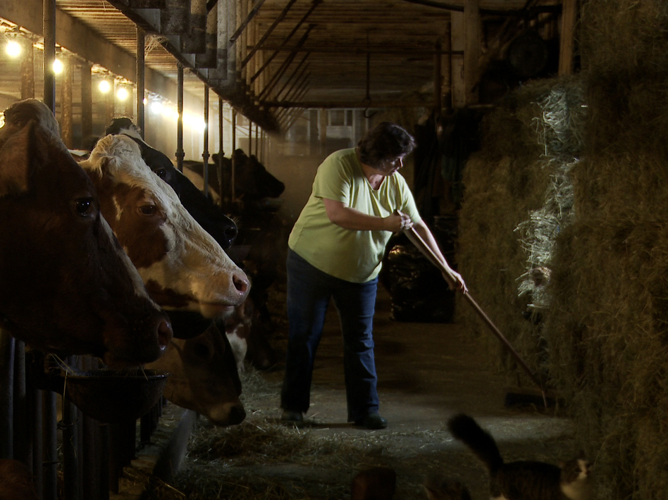 Laura Chase, a member of the MOOMilk dairy cooperative, sweeps her barn in a film still from documentary, <em>Betting The Farm</em>.
