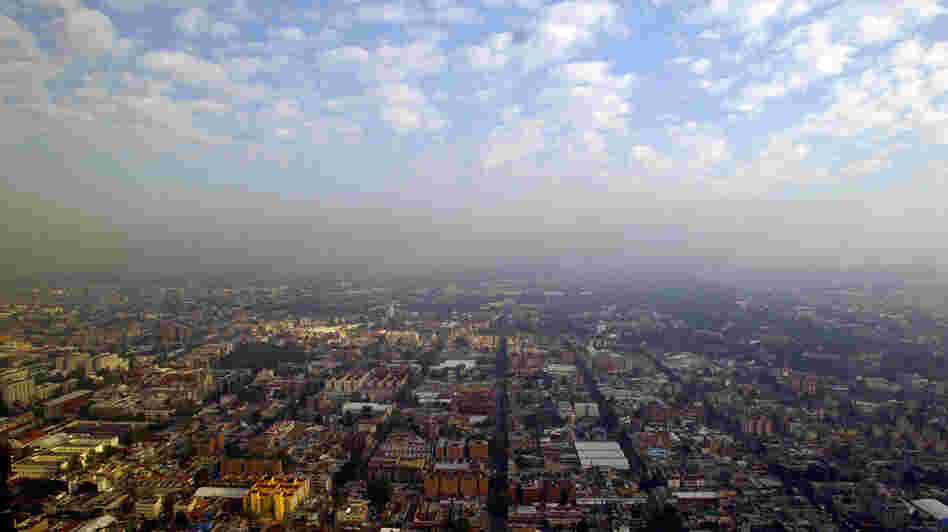 "In heavily polluted Mexico City, crime writer Paco Ignacio Taibo II describes his exhausted detective Hector Belascoaran Shayne as looking out at his hometown and seeing ""a city that was trying to hide itself in the smog."""