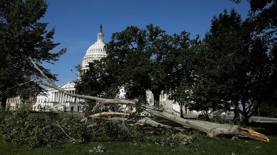 Branches and power lines littered the nation's capital after bruising storms swept through the Mid-Atlantic region on Friday night. (Getty Images)