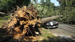 A downed tree lies on a truck in Falls Church, Va., after a powerful storm struck the area on Friday.
