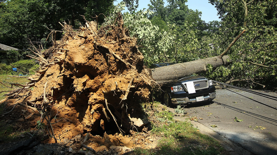 A downed tree lies on a truck in Falls Church, Va., after a powerful storm struck the area on Friday. (Getty Images)