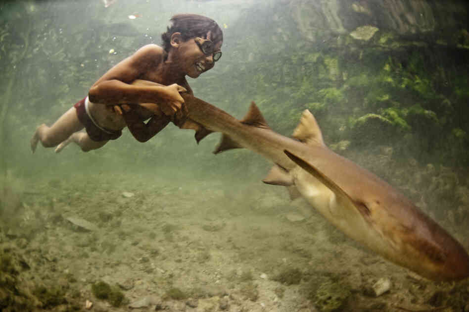 """Enal, a young sea nomad, rides on the tail of a tawny nurse shark in Sulawesi, Indonesia. Marine nomadism has almost completely disappeared in Southeast Asia as a result of severe marine degradation. I believe children such as Enal have stories that could prove pivotal in contemporary marine conservation."""
