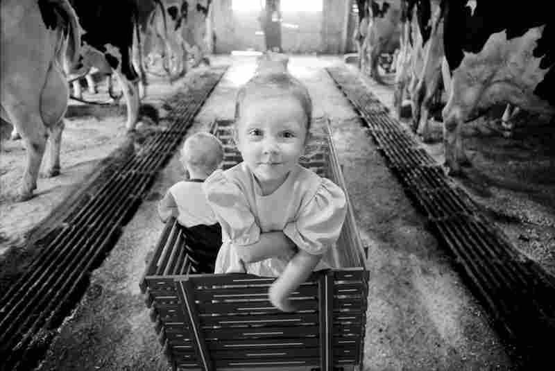 From the series Sending Milk, a project documenting Vermont family farms.