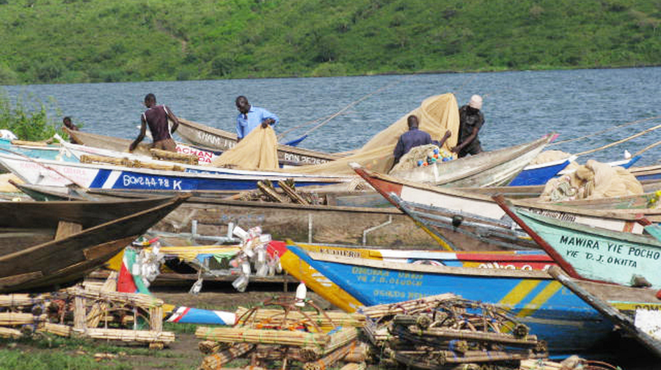 At Osindo Beach, local fishermen come in from fishing on Lake Victoria. Some fishermen are reluctant to get circumcised because they would miss three days of work. (NPR)