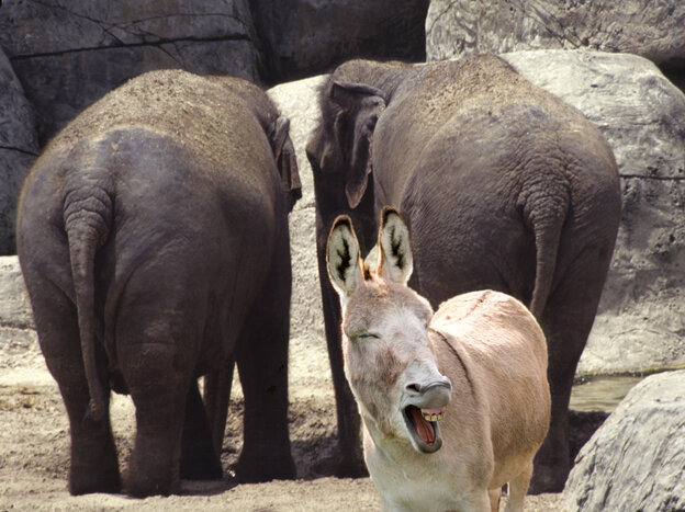 Even in zoos, donkeys and elephants turn their backs on their parties.