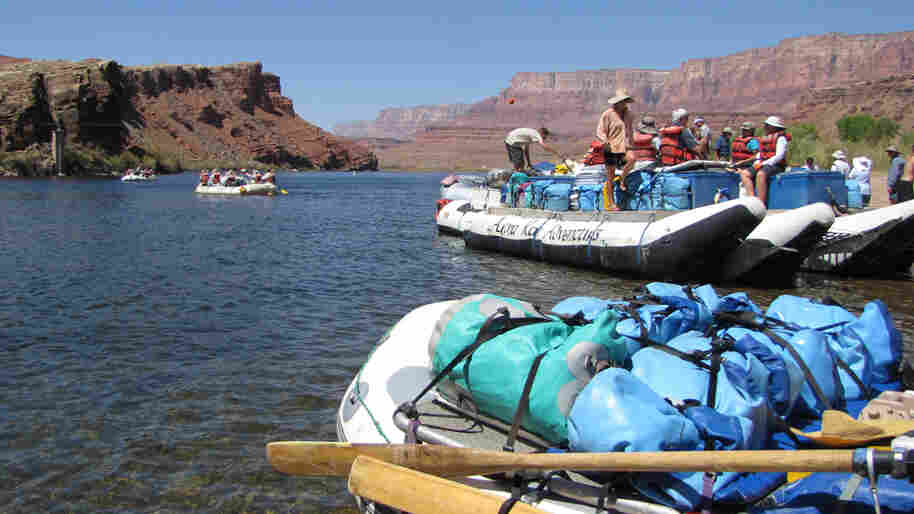 Rafting groups through the Grand Canyon often have difficulty finding sandy banks on which to set up camp. The Interior Department has approved a series of controlled floods to help restore the riverbank ecosystem.
