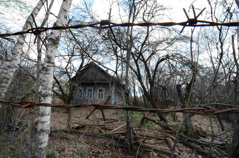The abandoned village of Vezhishche in Belarus sits within the exclusion zone established after the 1986 Chernobyl nuclear disaster. The zone was one of Andrew Blackwell's first stops on his tour of the world's most ruined places.