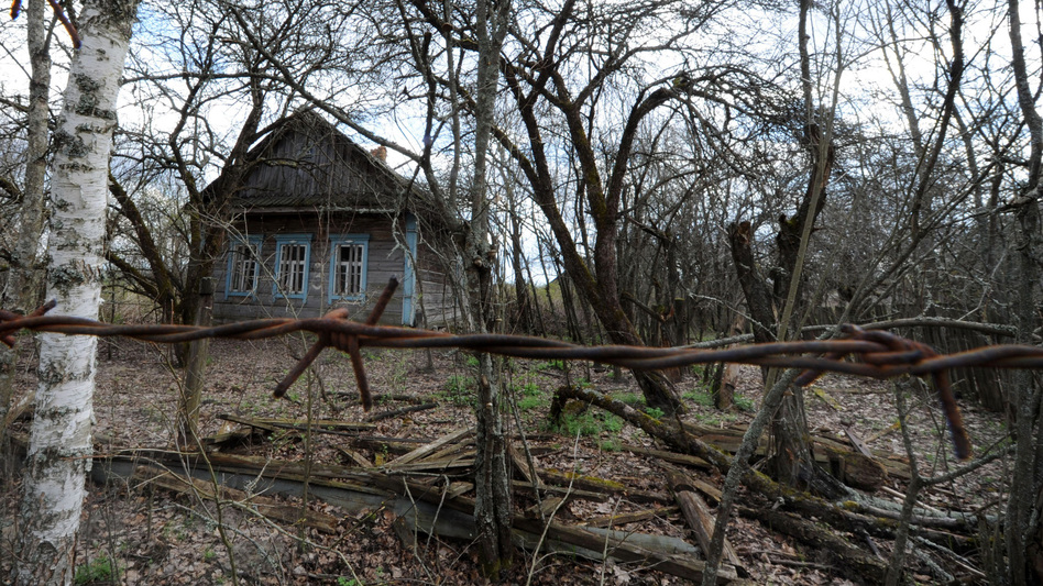 The abandoned village of Vezhishche in Belarus sits within the exclusion zone established after the 1986 Chernobyl nuclear disaster. The zone was one of Andrew Blackwell's first stops on his tour of the world's most ruined places. (AFP/Getty Images)