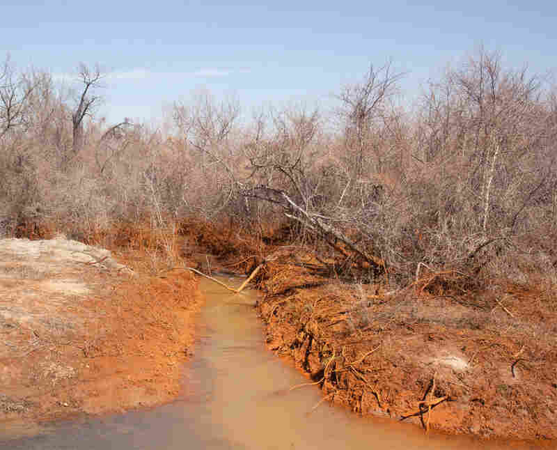"Tar Creek, 2011. Treece is part of the Tar Creek Superfund site, one of the largest Superfund sites in the United States. (According to the EPA, a Superfund site is ""an uncontrolled or abandoned place where hazardous waste is located."")"