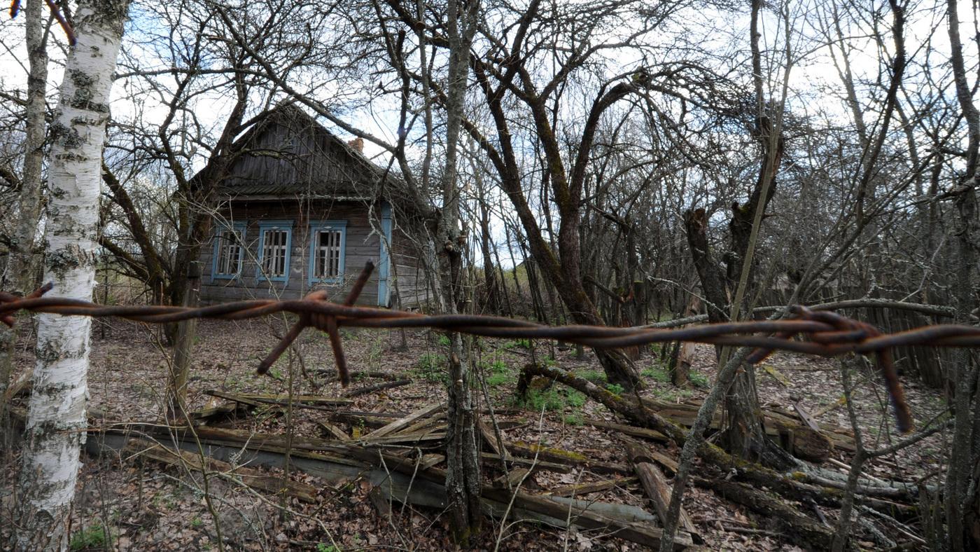 Sunny Chernobyl Beauty In A Haze Of Pollution Npr
