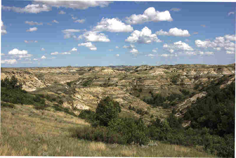 The ravines, or coulees, of the Badlands made for some arduous roundups, which Roosevelt reportedly enjoyed.