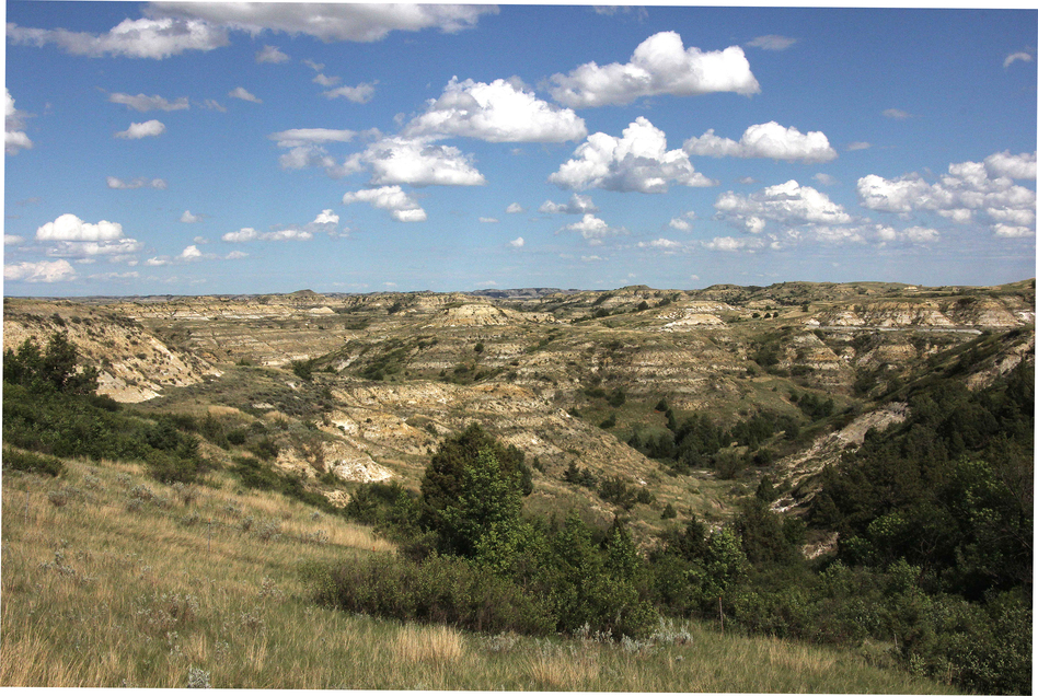The ravines, or coulees, of the Badlands made for some arduous roundups, which Roosevelt reportedly enjoyed. (John McChesney for NPR)