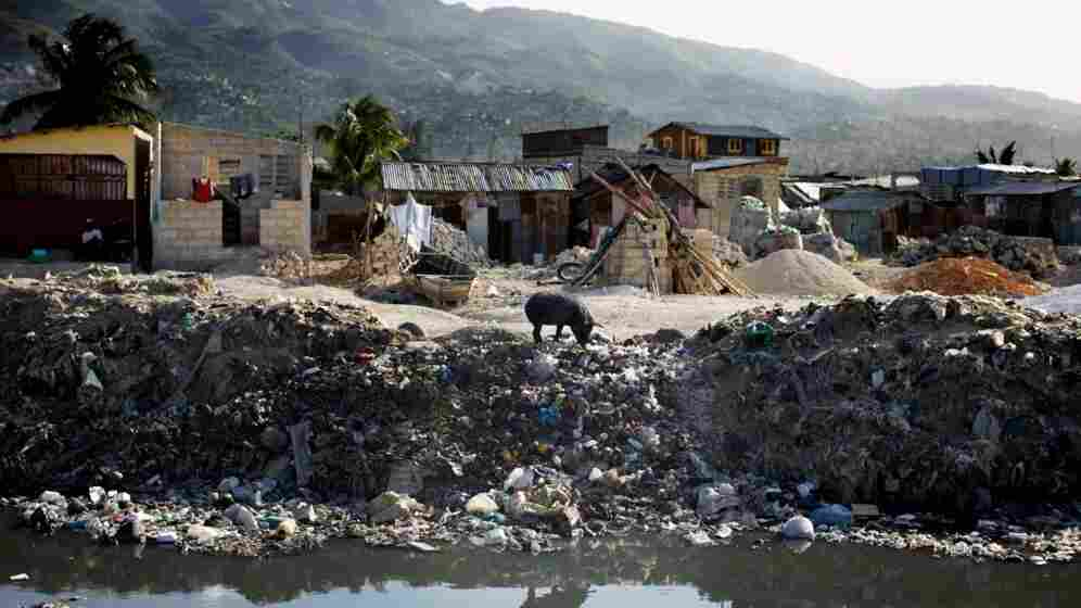 A lone pig roots through trash dumped over the side of a sewage canal that runs from the center of Port au Prince through Cite de Dieu. During the rainy season, the canal overflows its banks and fills nearby houses with sewage, which can carry cholera.