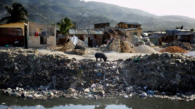 A lone pig roots through trash dumped over the side of a sewage canal that runs from the center of Port au Prince through Cite de Dieu. During the rainy season, the canal overflows its banks and fills nearby houses with sewage, which can carry cholera. (NPR)