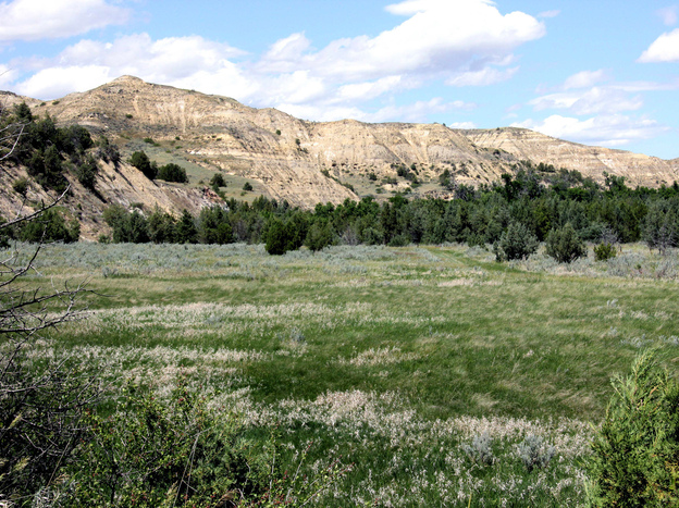 In the North Dakota Badlands, plans to build a bridge near Theodore Roosevelt's Elkhorn Ranch have led to protests.