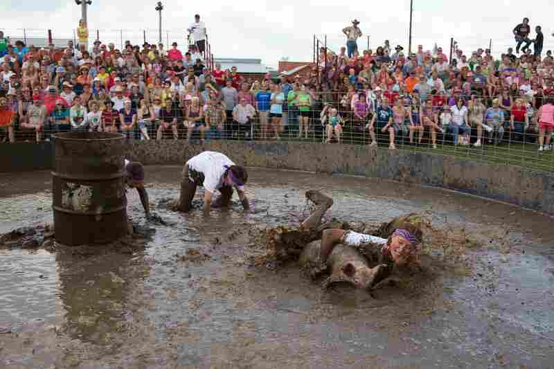 Hog wrestling, Viroqua, Wis.