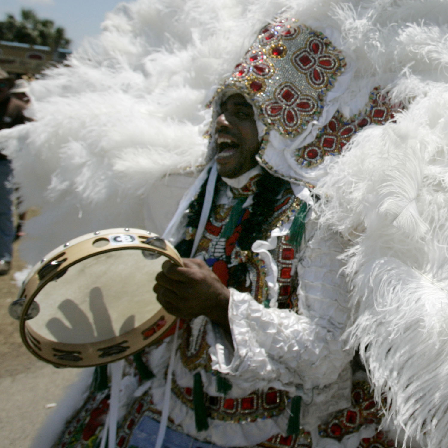 Mardi Gras Indians march through the crowd at the 2007 New Orleans Jazz and Heritage Festival. The Mardi Gras Indians are a mainstay of New Orleans culture, marching alongside brass bands in the annual Mardi Gras parades.