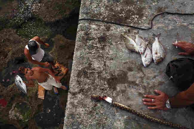 A teenage boy prepares to throw a freshly caught fish along the Malecon in Havana, Cuba, October 2008.