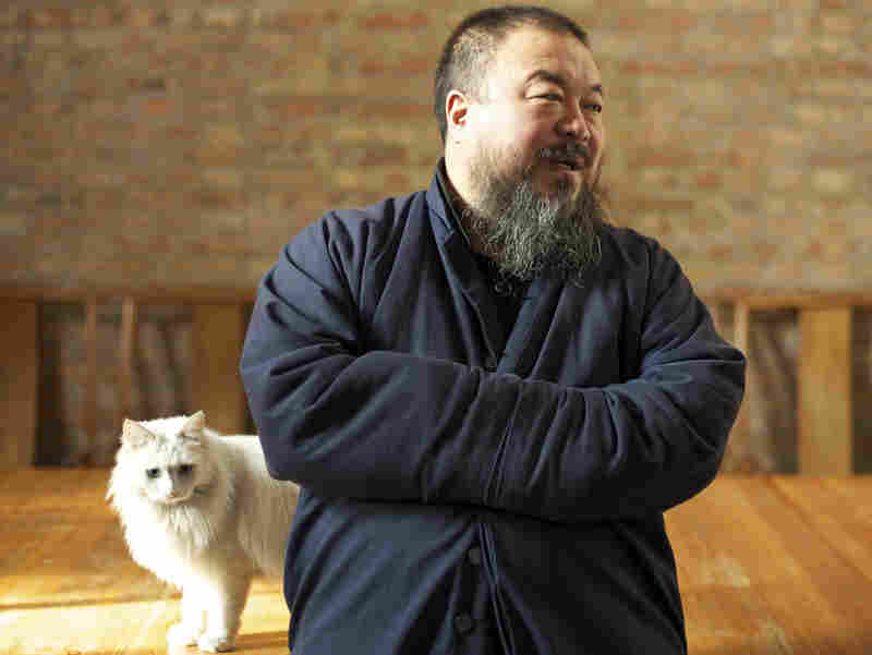 Ai lives in Beijing with his wife and around 40 cats and dogs. One of the cats has figured out how to open the door and escape.