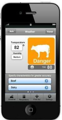 The new smartphone app Thermal Aid can help farmers detect the threat of heat stress in cows.