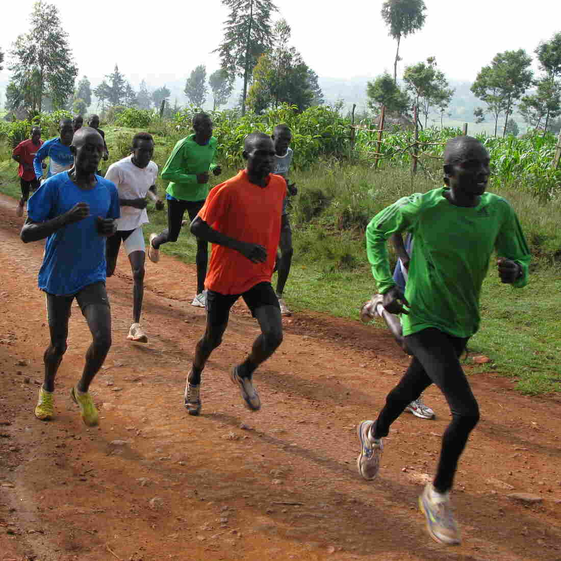 How Kenya Builds The Fastest Humans On Earth