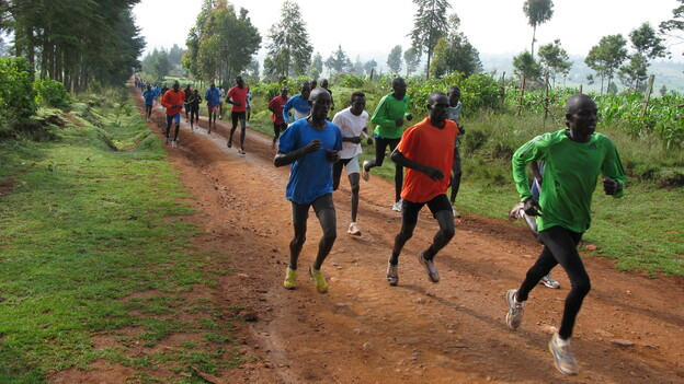 Every day at 9 a.m. sharp in Iten, Kenya, 200 or so runners — most of them unknowns hoping to become champions — train on the dirt roads surrounding the town. (NPR)