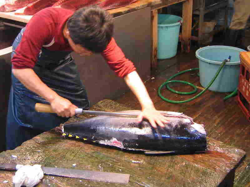 Sushi's popularity has led to a serious decline in tuna populations around the world. The film argues for sustainable sushi bars that offer tuna alternatives in their rolls.