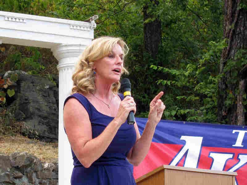 Former Missouri State Treasurer Sarah Steelman has earned the endorsement of Sarah Palin in her bid for a Republican Senate nomination.
