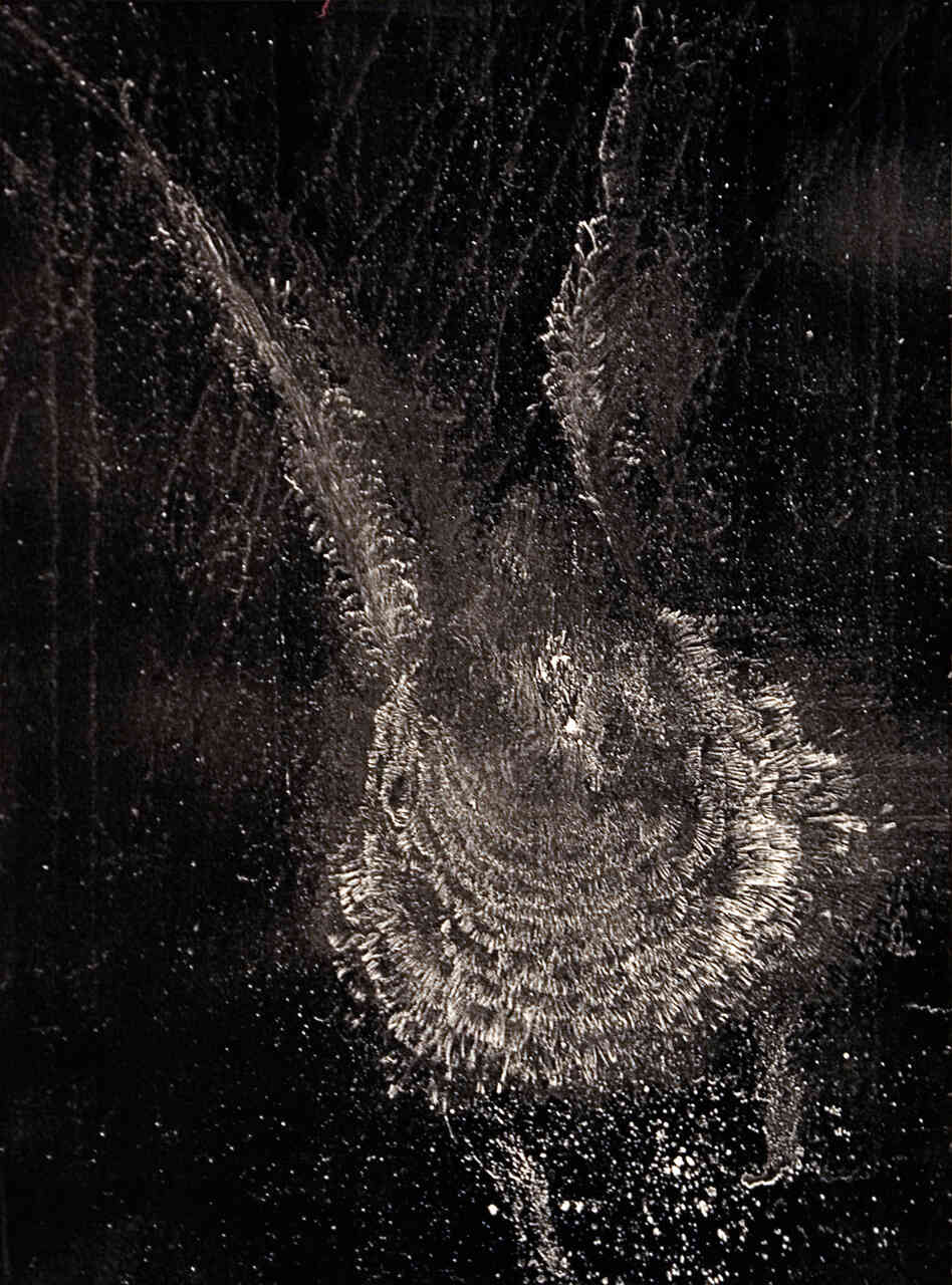 An image of a bird strike ghost print.