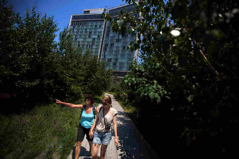 Visitors take in the views from the High Line, a Manhattan park developed on an old elevated railway line. City parks attract birds to the city, but glass-fronted buildings pose a danger.