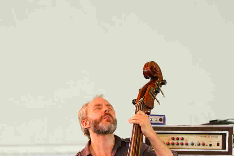 Bassist Reid Anderson of The Bad Plus performs at the 2012 Newport Jazz Festival.