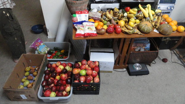 Rescued food waiting to be delivered. (Courtesy of Boulder Food Rescue)
