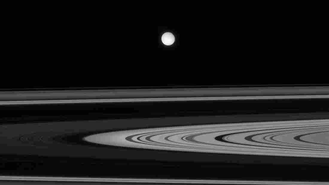 Some scientists are looking away from Mars to Saturn's moon, Enceladus, for life beyond Earth.