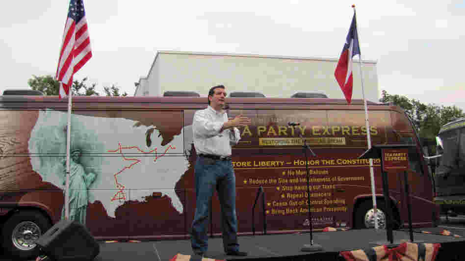 Ted Cruz, Republican candidate for the U.S. Senate, speaks at a rally organized by the Tea Party Express in San Antonio in May.