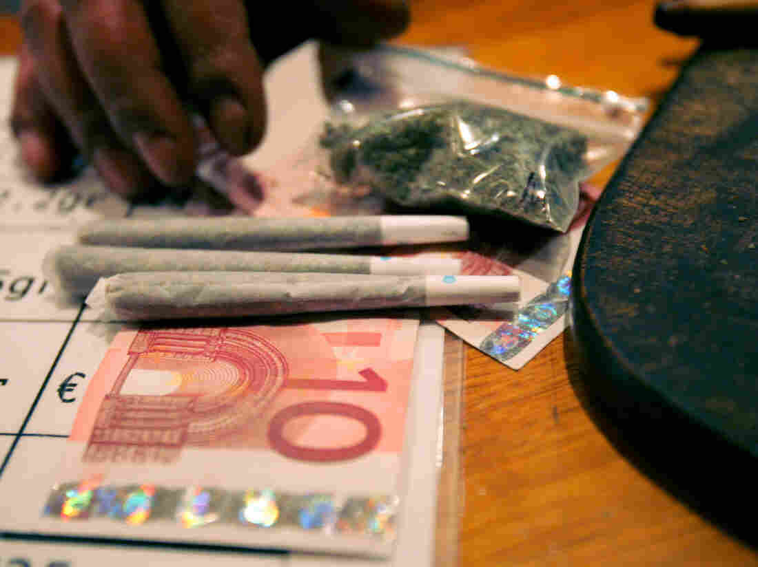 Marijuana in Maastricht