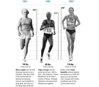 The physics of marathon running.