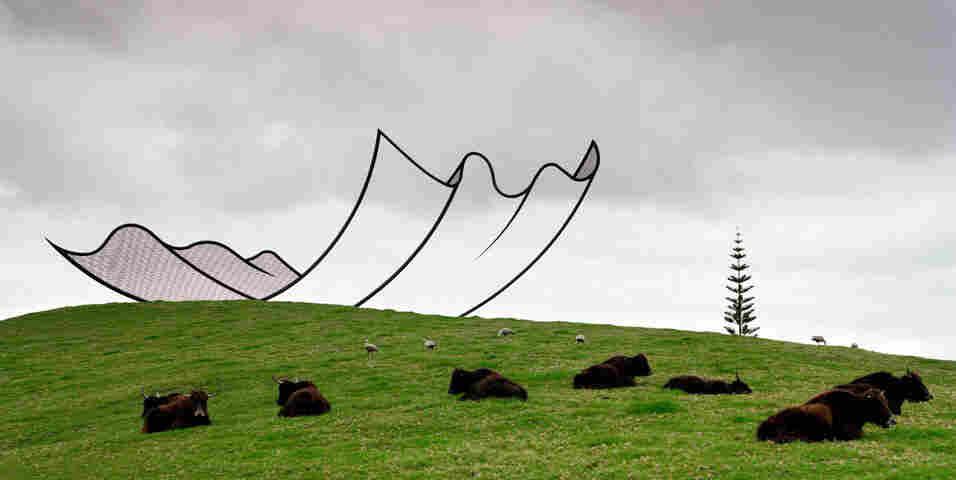 Neil Dawson Sculpture