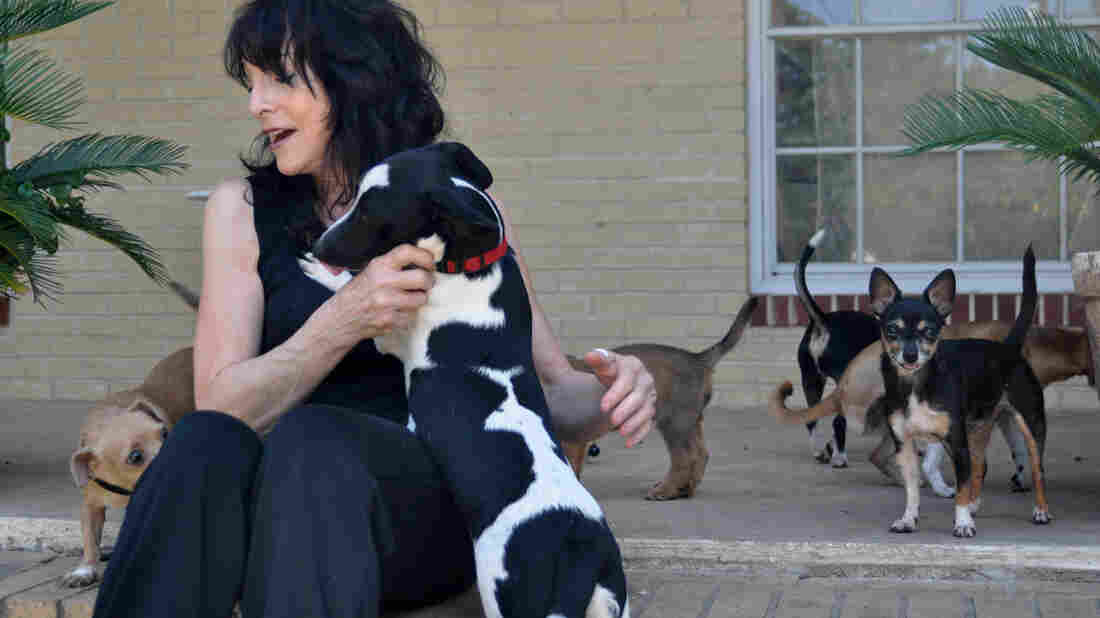 Carol Hirschi and her dogs.
