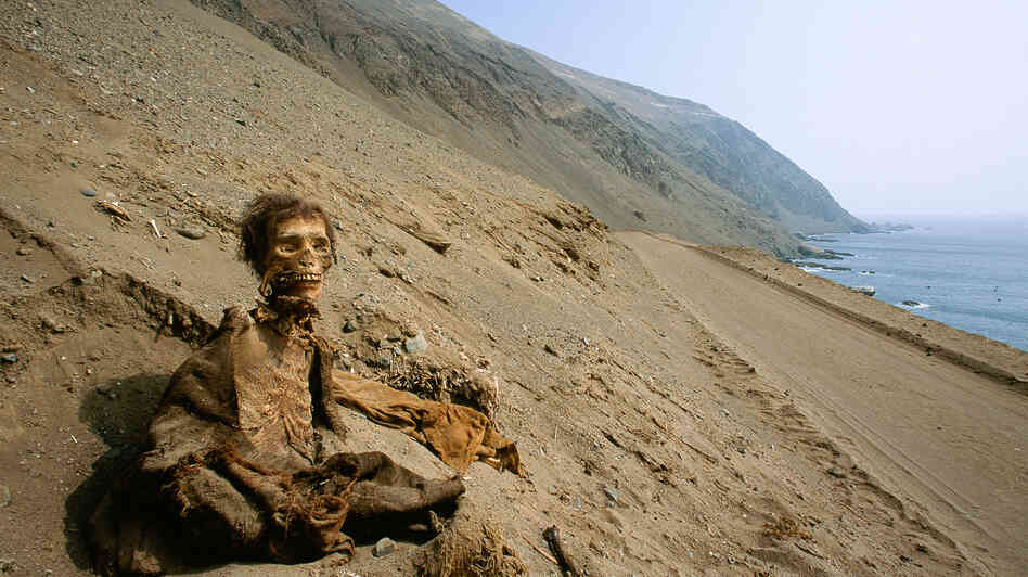 A photo from a recent National Geographic story shows a long-buried corpse, preserved by one of Earth's driest climates, Chile's Atacama Desert, where it has retained centuries-old skin, hair and clothing.