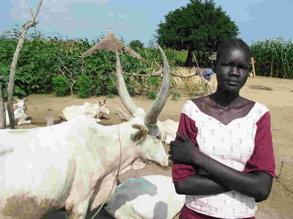 Amer is a 16-year-old Dinka girl in South Sudan's Jonglei state. Her grandmother is asking 80 cows as her dowry. Escalating dowries are one reason for the spike in violent cattle raids.