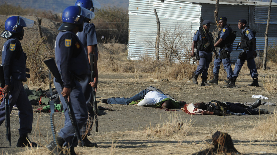 Police surround miners killed in Marikana, South Africa, on Thursday. (AFP/Getty Images)