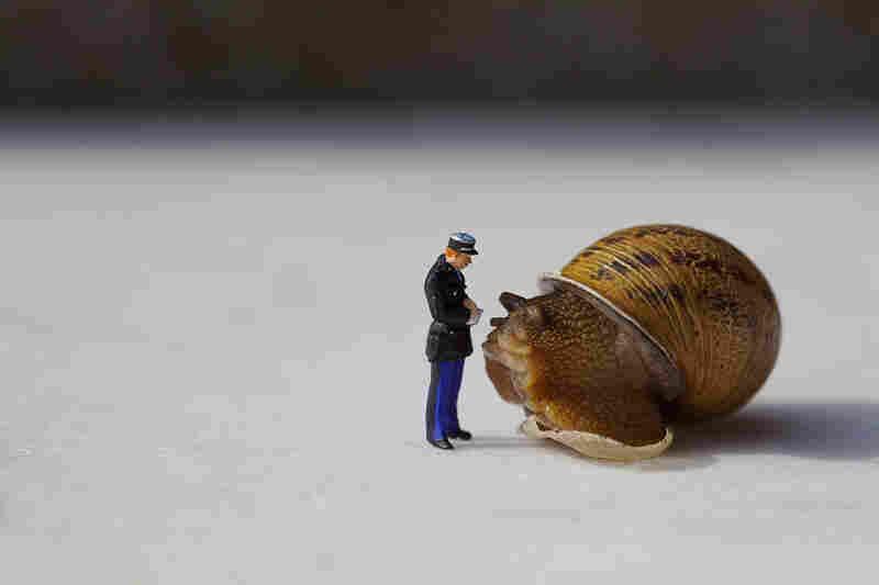 """""""Je vous assure que vous alliez trop lentement."""" (I assure you you're going too slow.)"""
