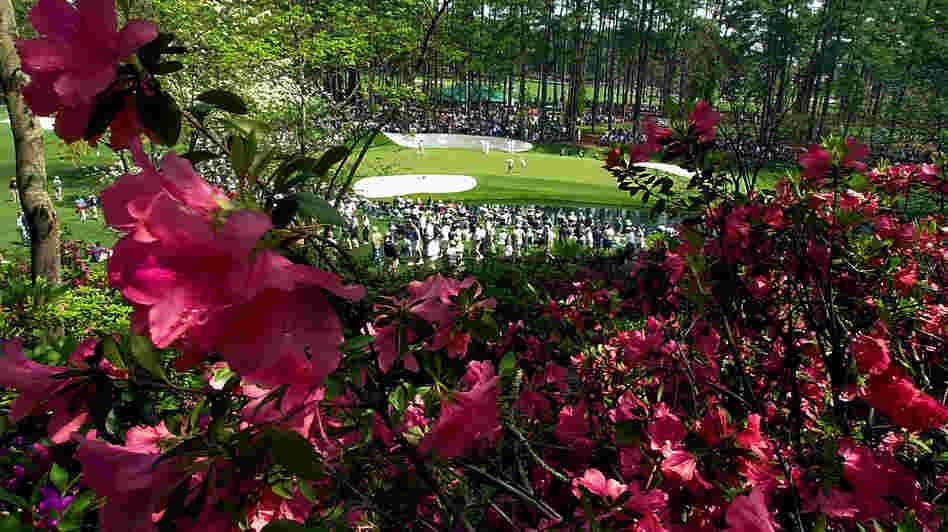 The 16th green at Augusta National — framed by some of the course's famed azaleas — in 2001.