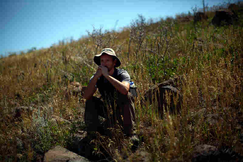 Castro sits in a field that used to be forested by Ponderosa pine trees in the Dome Wilderness, an area adjacent to Bandelier.