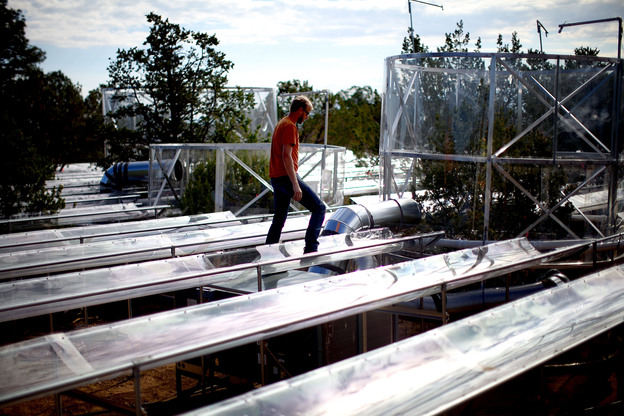 Powers walks along plastic gutters designed to keep rain away from tree roots to simulate drought. Scientists here are studying the effects of sustained drought conditions on the tree species of the Southwest. (NPR)
