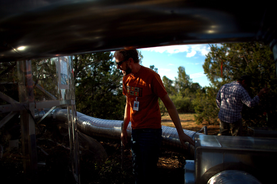 Powers looks in on a climate-controlled tree chamber. Silvery hoses carry heated air into the chambers. (NPR)