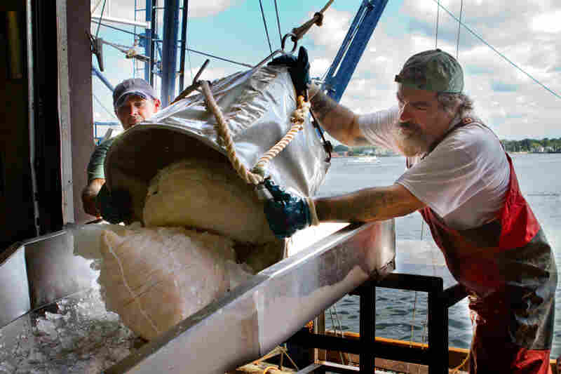 Crew members from the Paul + Michelle unload 60-pound bags of Atlantic scallops after a fishing trip.