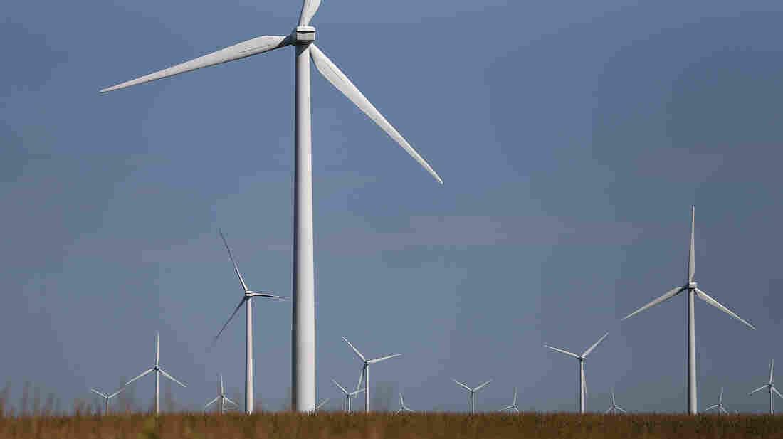 Windmills in a corn field in Colo, Iowa.